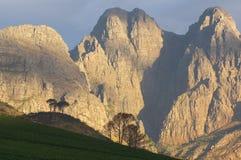 Vista generale di paesaggio nella regione del vino di Stellenbosch, C occidentale Immagine Stock