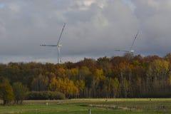 Vista geral das árvores do outono da turbina eólica Fotos de Stock Royalty Free