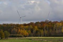 Vista geral das árvores do outono da turbina eólica Fotos de Stock
