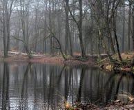 Vista geral do lago no outono Fotos de Stock