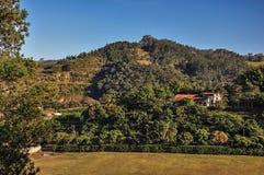 A vista geral dos montes com madeiras e da casa no nascer do sol, perto de Monte Alegre faz Sul Fotos de Stock Royalty Free