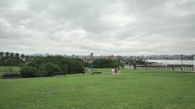 Vista geral verde do parque da cidade com uma abundância de plantas verdes e de tentativas de tipos diferentes, de povos wlaking  video estoque