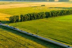 Vista giù ai campi ed al legno Fotografie Stock