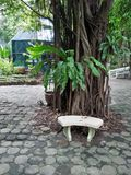 vista in giardino Fotografia Stock