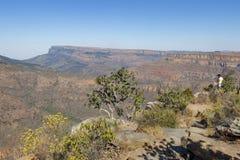 Vista godente turistica del canyon del fiume di Blyde immagini stock