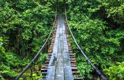 Vista grandangolare del ponte di cavo sopra il fiume in Georgia Immagini Stock Libere da Diritti