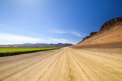 Vista grandangolare della strada della ghiaia accanto ad un giacimento irrigato enorme dell'uva e delle montagne del deserto dall fotografia stock libera da diritti