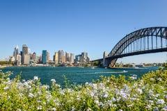 Vista grandangolare sbalorditiva dell'orizzonte della città dell'area del porto di Sydney CBD a Quay circolare con il ponte del p Immagine Stock