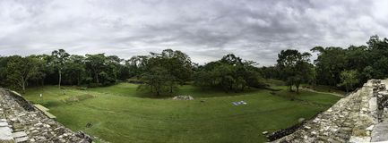 Vista of a green jungle behind a grass field. In the Maya city state of Palenque Royalty Free Stock Photography