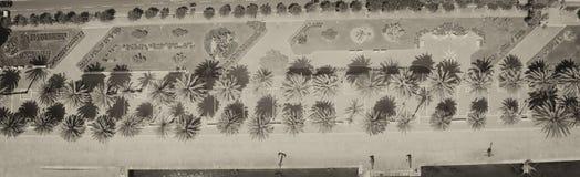 Vista hacia abajo de la 'promenade' de la ciudad con las palmas Fotografía de archivo libre de regalías