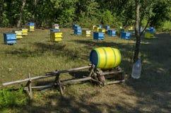 Vista hacia el colmenar con la colmena de la abeja en el campo en el bosque Imagen de archivo libre de regalías