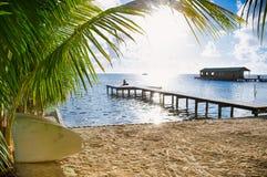 Vista hermosa del Caribe con agua de la turquesa en el calafate de Caye, fotografía de archivo libre de regalías