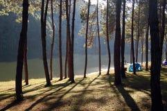 Vista hermosa en la punzada-Oong, Maehongson, Tailandia Imagen de archivo libre de regalías