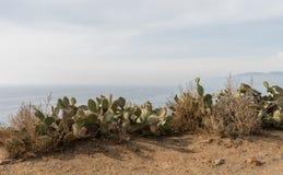 Vista hermoso de Dume del punto en el invierno, Malibu, California Fotos de archivo