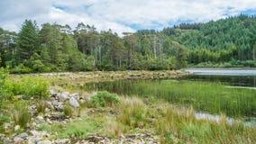 Vista idilliaca vicino al villaggio di Plockton negli altopiani della Scozia nella contea di Ross e di Cromarty fotografia stock libera da diritti