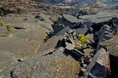 Vista imponente de la superficie del cráter del volcán de Kilauea Iki con la roca de la lava que desmenuza en parque nacional de  Imagen de archivo libre de regalías