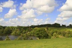Vista impressionante do lago e do campo Fotografia de Stock