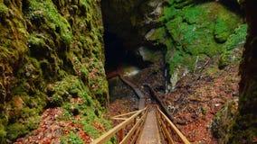 Vista inclinable de arriba hacia abajo de la cueva de hielo de Scarisoara en Rumania