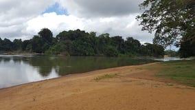 Vista incrível de um rio no brokopondo foto de stock