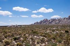 Vista indiana del deserto Fotografia Stock Libera da Diritti