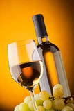 Vista inferior de um vidro do frasco de vinho branco Imagem de Stock