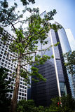 Vista inferior dos arranha-céus modernos que constroem no distrito financeiro de Hong Kong Imagem de Stock Royalty Free