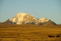 Vista innevata dell'alta montagna dal campo piano Fotografia Stock