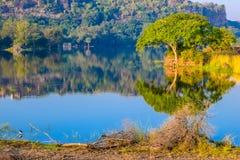 Vista interior del parque nacional de RANTHAMBORE, la India Asia imagen de archivo