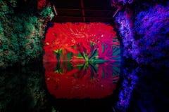 Vista interior do pavilh?o da flor do mundo Flora Exposition de Taichung fotografia de stock royalty free