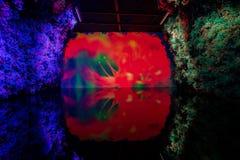 Vista interior do pavilh?o da flor do mundo Flora Exposition de Taichung fotos de stock royalty free