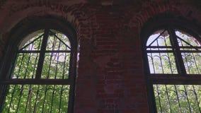 Vista interna à floresta exterior através da janela arruinada velha vídeos de arquivo