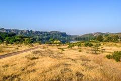 Vista interna del parco nazionale di RANTHAMBORE, India Asia Secondo il gruppo turistico sul safari nella giungla, questa è la po fotografia stock libera da diritti