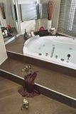 Vista interna di un bagno del modenr Fotografia Stock