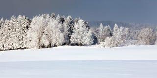 Vista invernale dagli altopiani di Moravian e del Bohemian immagine stock libera da diritti