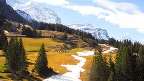 Vista Junfraujoh del paesaggio con il fondo della montagna Immagini Stock Libere da Diritti