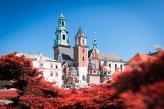 Vista a la catedral de Wawel en Kraków, Polonia Imagen de archivo libre de regalías
