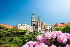 Vista a la catedral de Wawel en Kraków, Polonia Foto de archivo