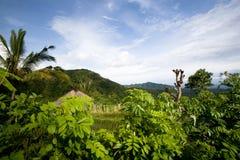 Vista a la montaña y a los campos verdes Foto de archivo libre de regalías