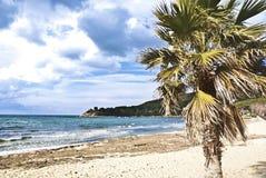Playa de Procchio Imagen de archivo libre de regalías