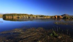 Vista a lamella del lago in Cina di nord-ovest Immagini Stock Libere da Diritti