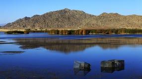 Vista a lamella del lago fishing Fotografie Stock Libere da Diritti
