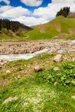 Vista a las colinas de las montañas del Cáucaso cerca de Arkhyz Fotografía de archivo libre de regalías