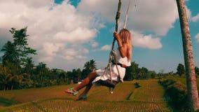 Vista lateral aérea de la mujer en el balanceo sobre fondo hermoso de los campos del arroz metrajes