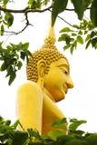 Vista lateral de Buda con el árbol Foto de archivo