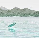 Vista lateral de Grey Heron Wading en agua imagen de archivo