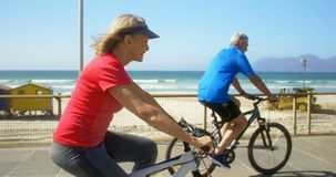 Vista lateral de la bicicleta que monta de los pares caucásicos mayores activos en una 'promenade' en la playa 4k metrajes