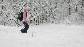 Vista lateral de la mujer activa que hace el nordic que camina con los polos de esquí en la trayectoria en naturaleza del inviern metrajes