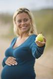 Vista lateral de la pera de la explotación agrícola de la mujer embarazada foto de archivo libre de regalías