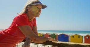 Vista lateral de la situación caucásica mayor activa de la mujer en una 'promenade' en la playa 4k almacen de metraje de vídeo