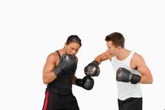 Vista lateral de los boxeadores de la lucha Foto de archivo
